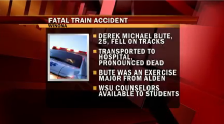 Fatal Train Accident_1453089443209.png