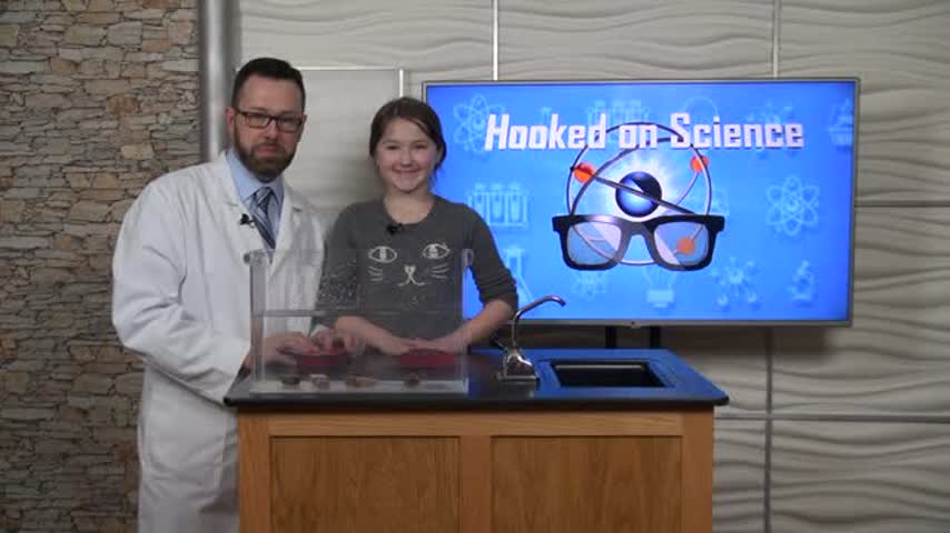 Hooked On Science- Candy Drop_47769424