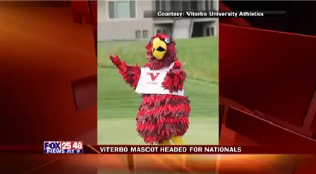 Viterbo Mascot Heads to Nationals_1487387728387.png