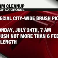 Storm Cleanup_45828742