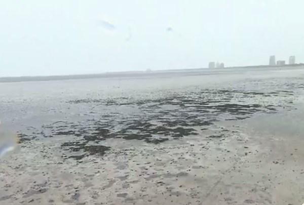hurricane_tampa_waterways_2_1505074240352.jpg