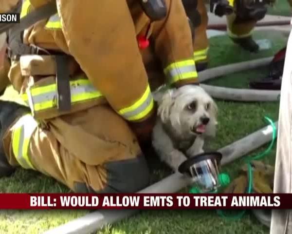 Bill Allows EMTs To Treat Animals_95769045