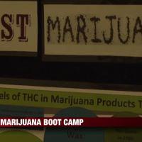 Marijuana Boot Camp_12497849