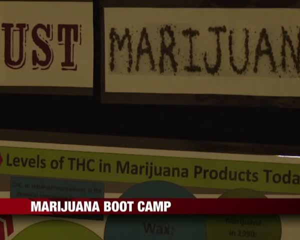 Marijuana Boot Camp_12497849