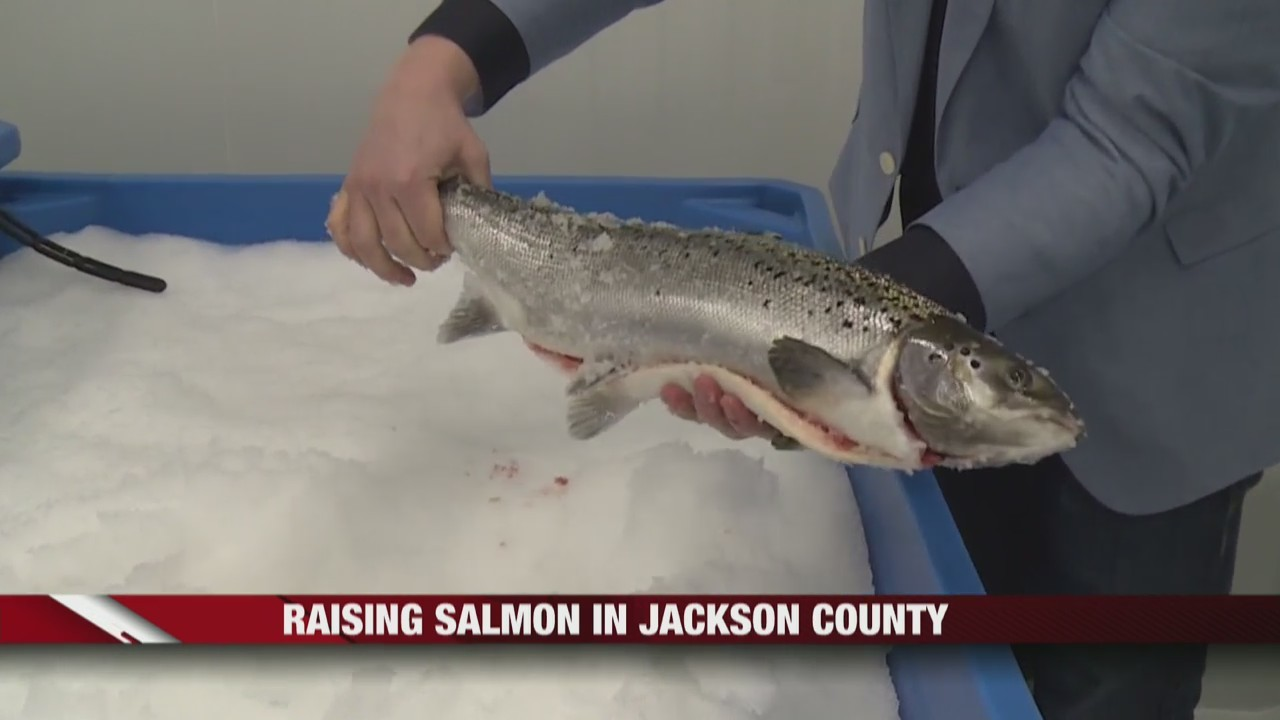 Raising_Salmon_in_Jackson_County_0_20190227161306