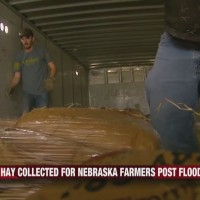 Hay_Collected_for_Nebraska_Farmers_Post__0_20190331020738