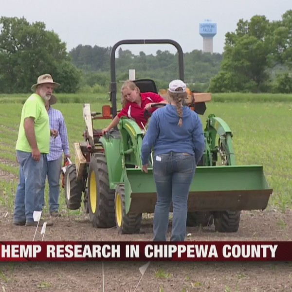 Hemp_research_in_Chippewa_County_0_20190612141849