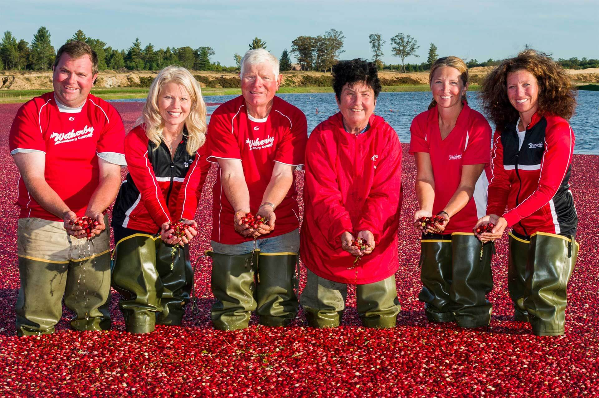 Harvesting Heroes: Wetherby Cranberry Company - the Cranberry Capital of the world!