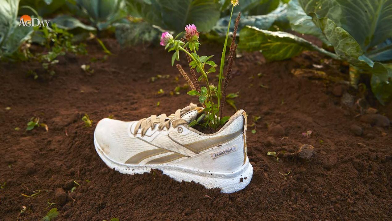 Reebok Introduces Plant-Based Shoe