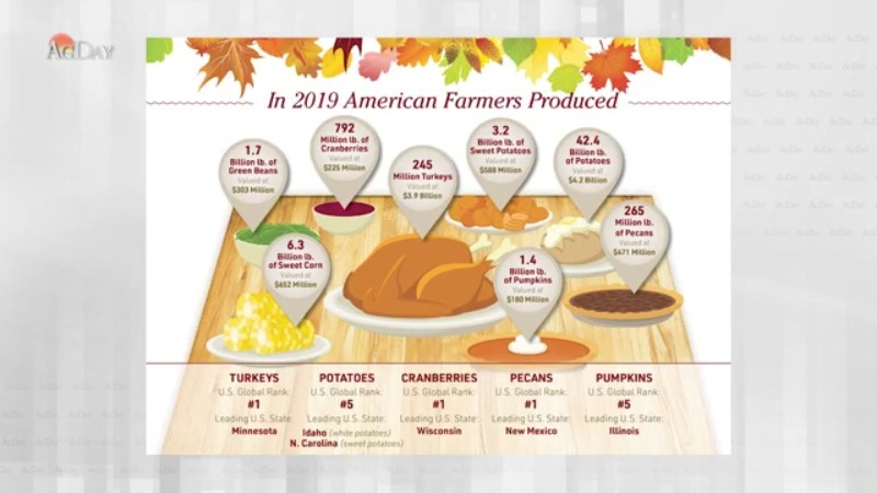 How Those Thanksgiving Favorites Add Up from Farm to Table