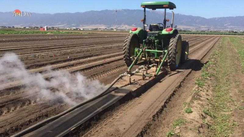 A Possible New Treatment for Weeds: Steam Them Away!