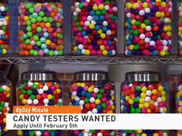 """Canadian Candy Store Looking to Hire for a """"Sweet"""" Job!"""