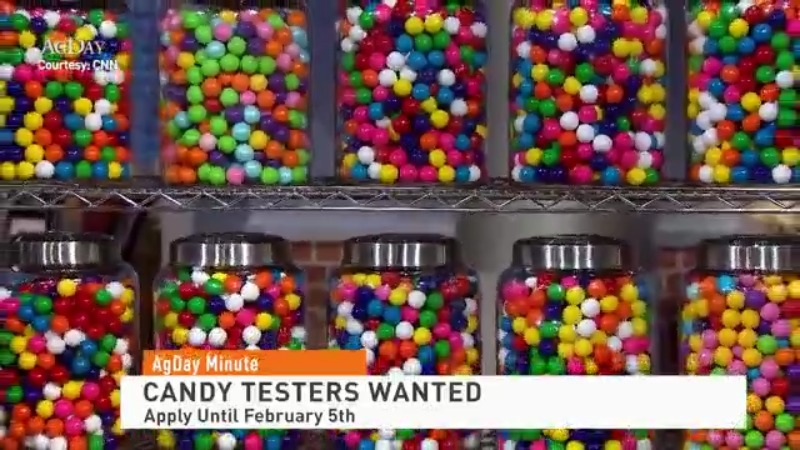 "Canadian Candy Store Looking to Hire for a ""Sweet"" Job!"
