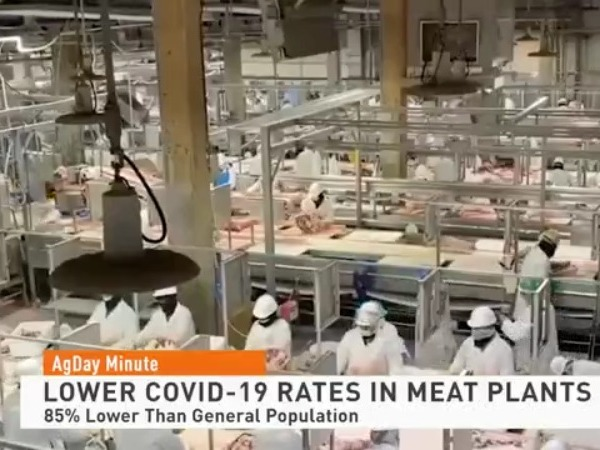 Rate of COVID-19 Infections in Meat Plants 85% Lower Than General Population
