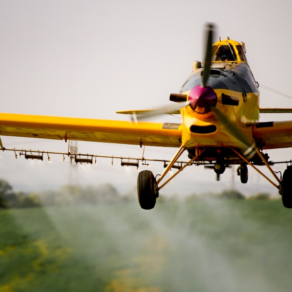 Gypsy Moth Aerial Spraying to Begin in May
