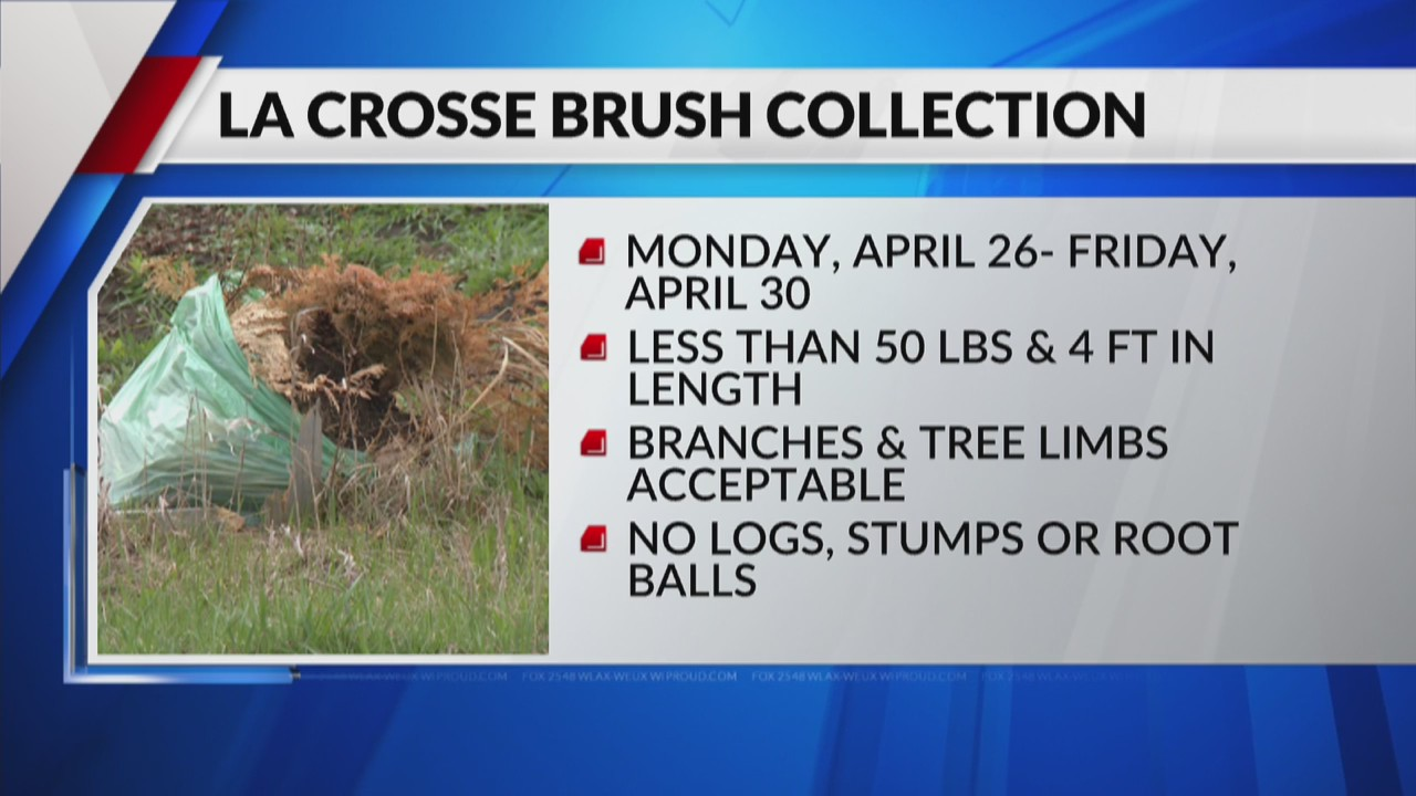 City of La Crosse to offer brush pick up for free