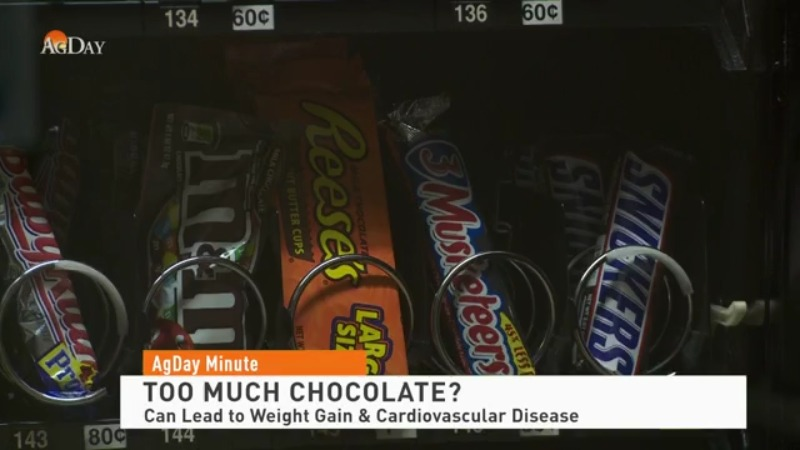 Eating too much chocolate can lead to early death