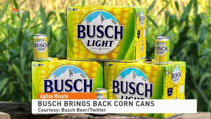 Busch brings back limited-edition corn cans