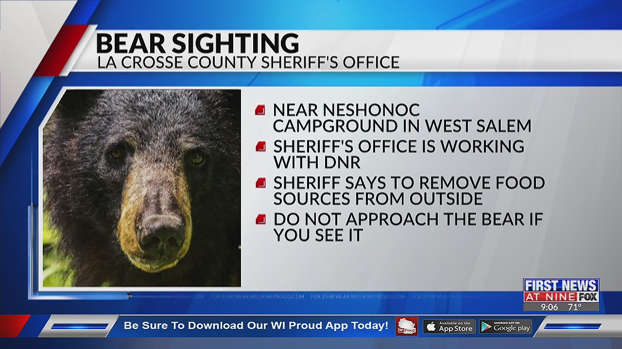 La Crosse County Sheriff's Office warns residents of bear sighting near West Salem