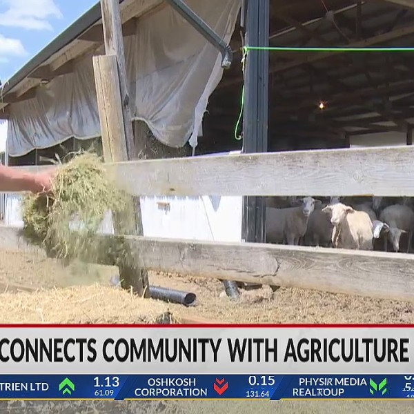 Maple Hill Farm connects Rusk County community with agriculture