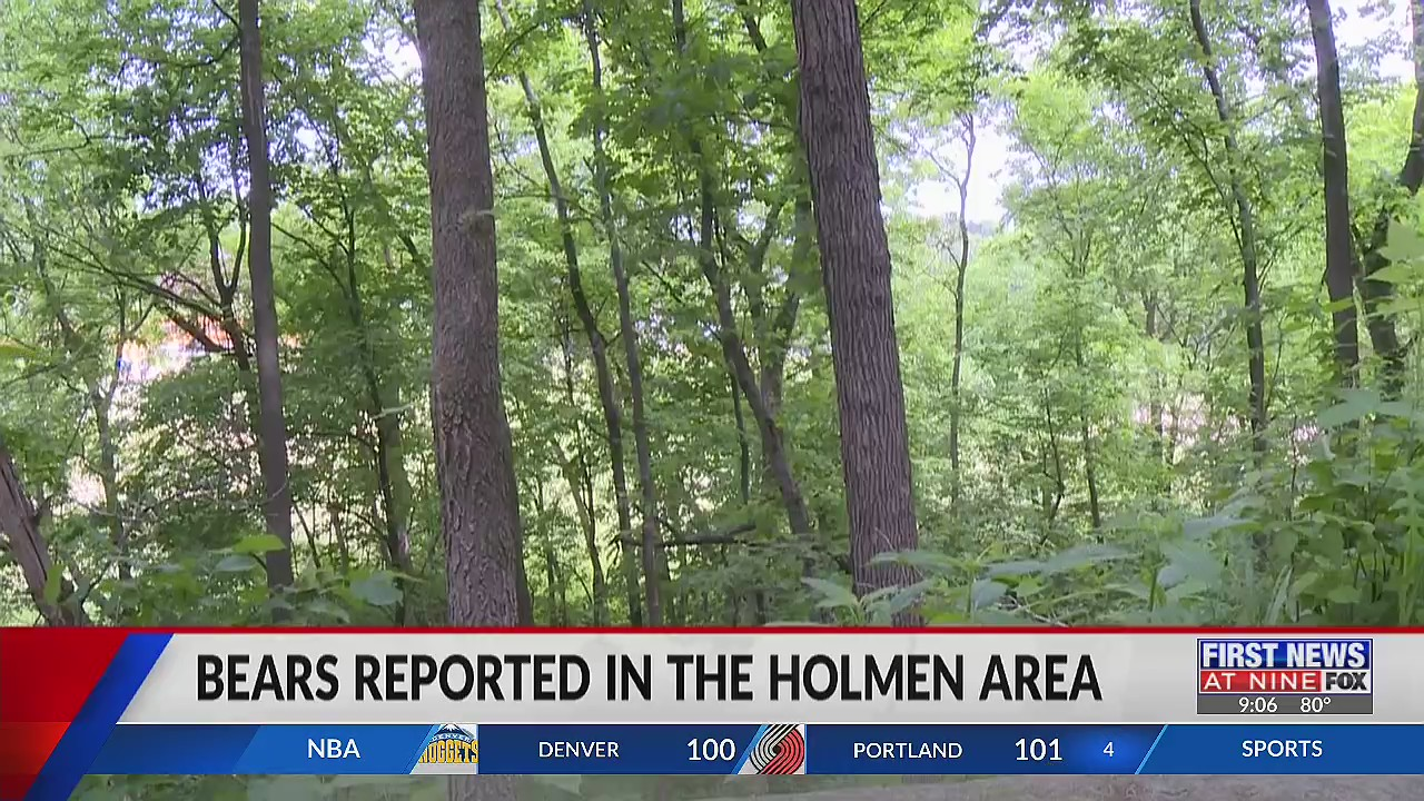 Bear tips Bears reported in the Holmen area