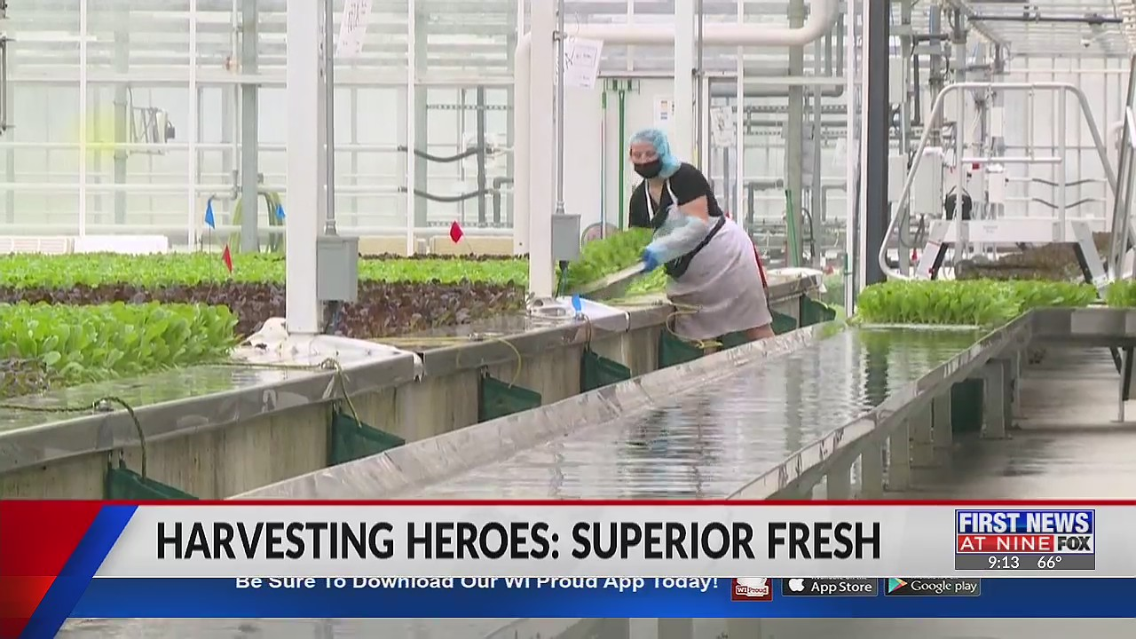 Superior Fresh shapes the future of agriculture